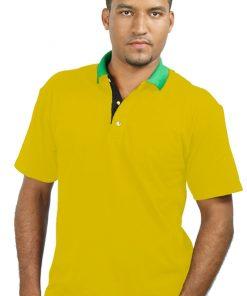 Men's Multicoloured Placket Golf Shirt